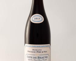 Côte de Beaune Les Mondes Rondes 2017